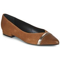 Shoes Women Ballerinas JB Martin TALENT Brown