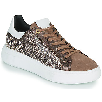 Shoes Women Low top trainers JB Martin HIBISCUS Brown
