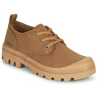 Shoes Men Low top trainers Aigle TERRE Brown
