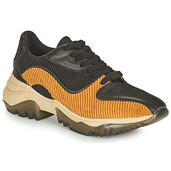 Shoes Women Low top trainers Castaner ORIENTE Black / Cognac
