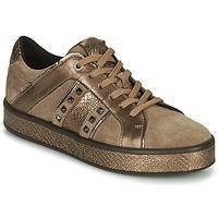 Shoes Women Low top trainers Geox LEELU Brown / Gold