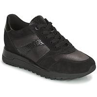 Shoes Women Low top trainers Geox TABELYA Black