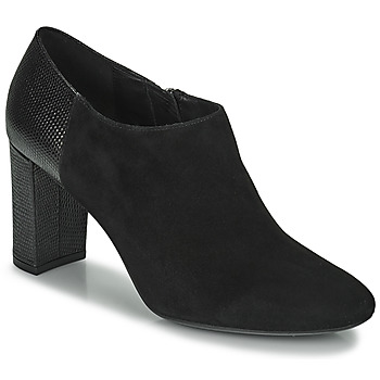 Shoes Women Low boots Geox PHEBY Black