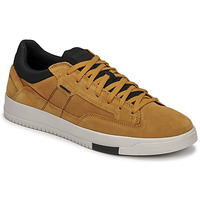 Shoes Men Low top trainers Geox SEGNALE Camel