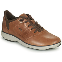Shoes Men Low top trainers Geox NEBULA Brown