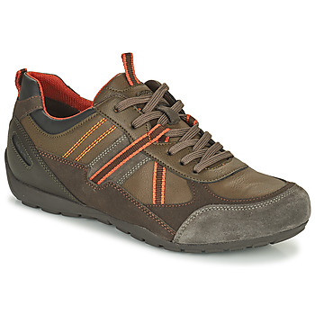 Shoes Men Low top trainers Geox RAVEX Brown