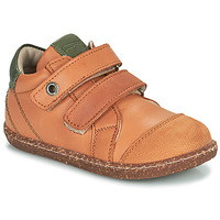 Shoes Boy High top trainers Aster WASHAN Camel / Green