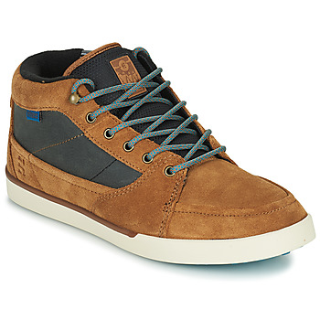 Shoes Men High top trainers Etnies FORELAND Brown / Grey