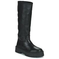 Shoes Women Boots Musse & Cloud BRULI Black