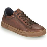 Shoes Men Low top trainers Fluchos NIKO Brown