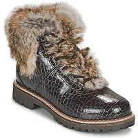 Shoes Women Mid boots Kimberfeel ASTANA Brown