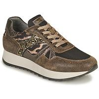 Shoes Women Low top trainers NeroGiardini AVOCATO Kaki / Leopard
