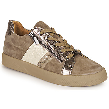 Shoes Women Low top trainers Mam'Zelle AUBER Beige
