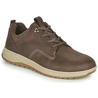 Shoes Men Low top trainers Caterpillar TITUS Brown