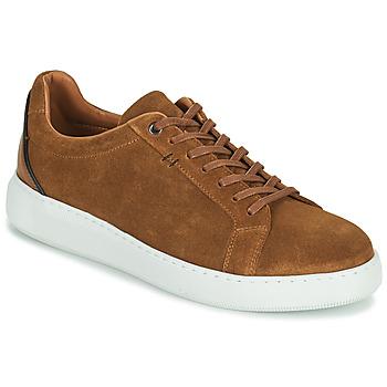Shoes Men Low top trainers Pellet OSCAR Brown