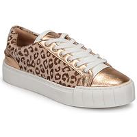 Shoes Women Low top trainers Vanessa Wu LEVANTER Leopard