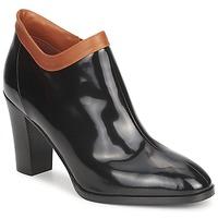 Shoes Women Low boots Sonia Rykiel 654802 Black / Ocre tan