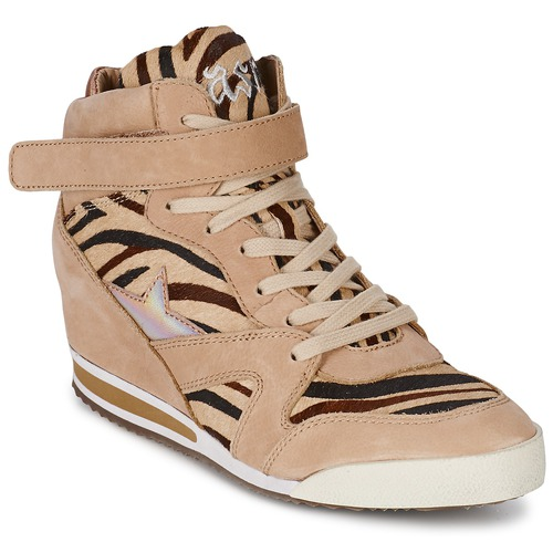 Shoes Women High top trainers Ash JAZZ Zebra