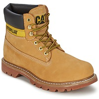 Shoes Women Mid boots Caterpillar COLORADO HONEY