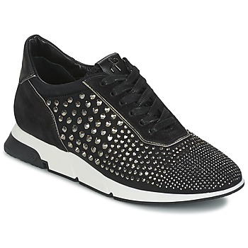 Shoes Women Low top trainers Luciano Barachini SOHO Black
