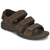 Shoes Men Sandals Caterpillar ENTRANT Brown