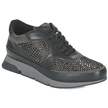Shoes Women Low top trainers Luciano Barachini OXFORD Black / Grey