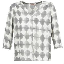 material Women Shirts DDP GOSA Taupe / Ecru