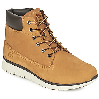 Shoes Children High top trainers Timberland KILLINGTON 6 IN Wheat