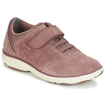 Shoes Girl Low top trainers Geox NEBULA GIRL Pink