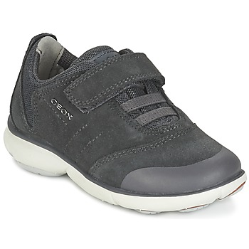 Shoes Boy Low top trainers Geox NEBULA BOY Grey