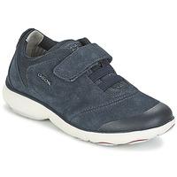 Shoes Boy Low top trainers Geox NEBULA BOY Blue