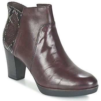Shoes Women Ankle boots Tamaris VICHA Bordeaux
