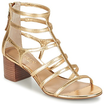 Shoes Women Sandals Ralph Lauren MADGE SANDALS DRESS Gold