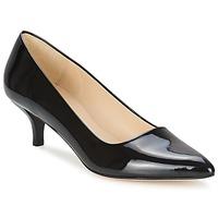 Shoes Women Court shoes Paco Gil UTIEL  BLACK