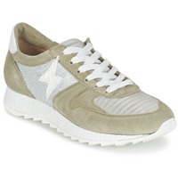 Shoes Women Low top trainers Mjus HONEY Kaki