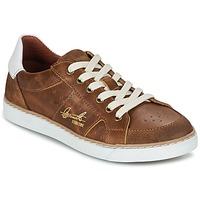 Shoes Boy Low top trainers Bullboxer AJIMET COGNAC
