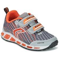 Shoes Boy Low top trainers Geox J SHUTTLE B.A Grey / Orange