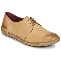 Shoes Women Derby shoes Kickers HOLSTER Brown / Clear