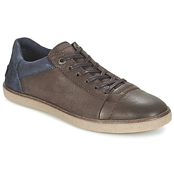 Shoes Men Low top trainers Kickers CALIC Brown / Dark