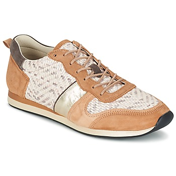 Shoes Women Low top trainers Bocage LANNY COGNAC / White