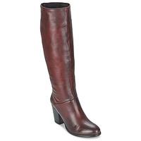 Shoes Women Boots Betty London MIRIDIA BORDEAUX