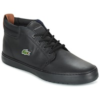 Shoes Men High top trainers Lacoste AMPTHILL TERRA Black