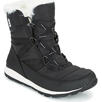 Shoes Women Snow boots Sorel WHITNEY SHORT LACE Black