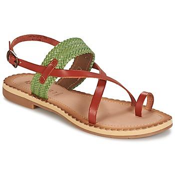 Shoes Women Sandals Kickers SAFAL CAMEL / Green