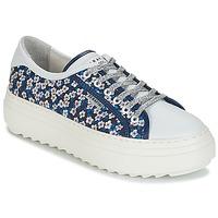 Shoes Women Low top trainers Serafini SOHO Blue