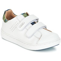 Shoes Boy Low top trainers Aster SIMAC White
