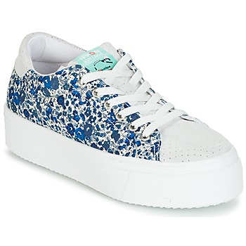 Shoes Women Low top trainers Ippon Vintage TOKYO-FLOW White / Blue