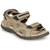 Shoes Men Sports sandals Geox S.STRADA D Sable / Marine