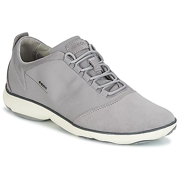 Shoes Men Low top trainers Geox U NEBULA C Grey