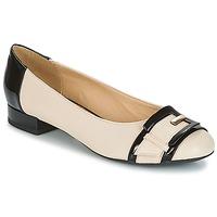 Shoes Women Ballerinas Geox WISTREY E Nude / Black